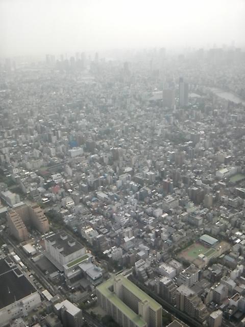 東京スカイツリーに登ったよ!